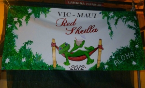 VM2012 Red Sheilla Finish